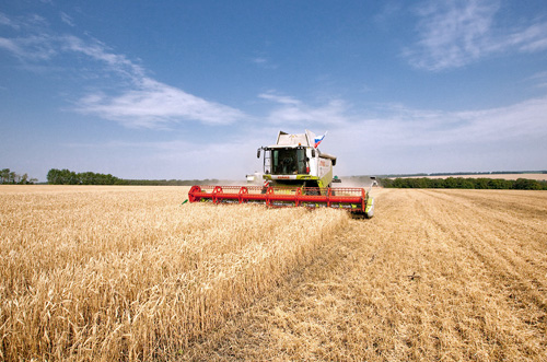 Рост ВВП Молдовы в 2013 г. во многом обусловлен хорошей динамикой производства сельхозпродукции
